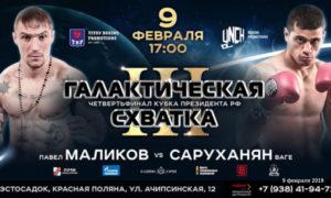 pavel-malikov-vage-saruhanyan-9-fevralya-2019-polnyj-boj