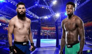 ufc-fight-night-154-brajan-barberena-rehndi-braun-23-iyunya-2019-polnyj-boj