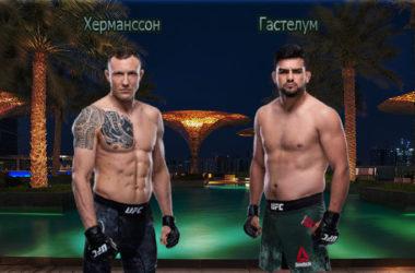 dzhek-hermansson-kelvin-gastelum-19-iyulya-2020-polnyj-boj